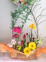 img_180130_MJ_higuchisama.jpg