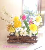 img_190212_MT_higuchisama.jpg