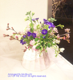img_190424_D_kikuchisama.jpg